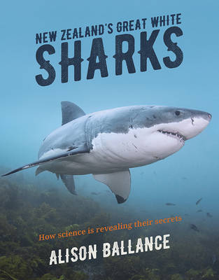 New Zealand's Great White Sharks. How science is revealing their secrets