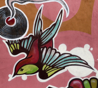 Homepage_m111-fitzroy-swallow3