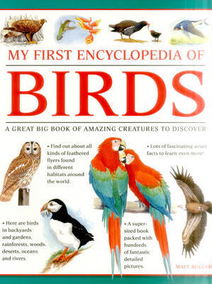 My First Encylopedia of Birds (Giant Size)