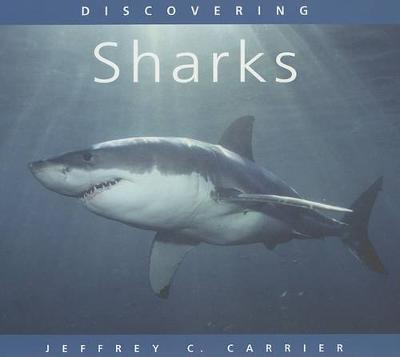 Discovering Sharks