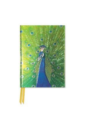 Peacock in Blue and Green (Foiled Pocket Journal)