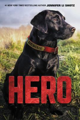 Hero: Rescue Dog