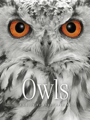 Owls: A Guide to Every Species