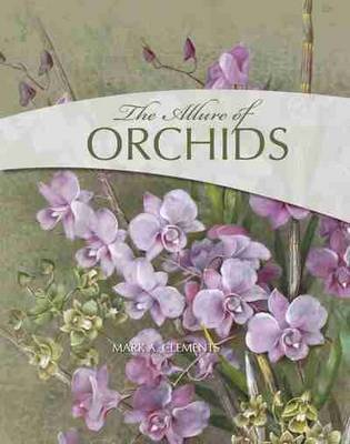 The Allure of Orchids