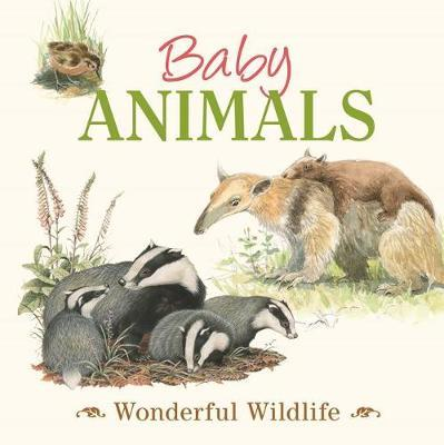 Baby Animals: Wonderful Wildlife