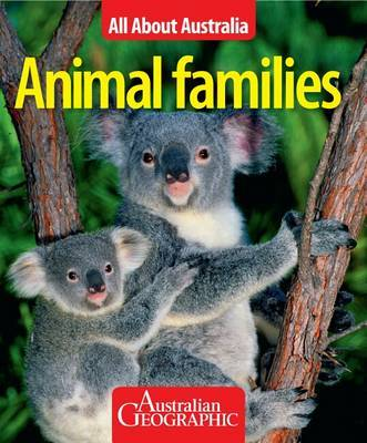 All About Australia: Animal Families