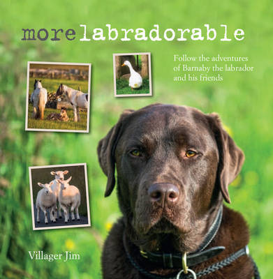 Morelabradorable: Follow the Adventures of Barnaby the Labrador and His Friends