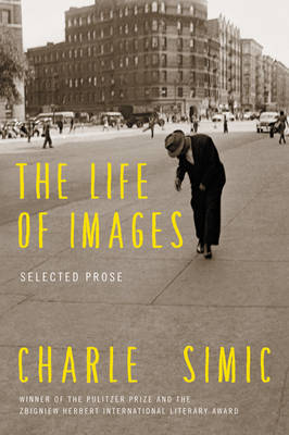 The Life of Images: Selected Prose