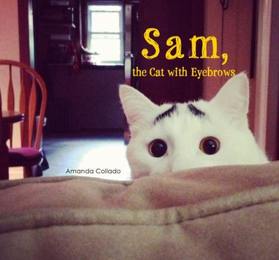 Sam, the Cat with Eyebrows