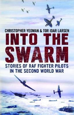 Into the Swarm: Stories of RAF Fighter Pilots in the Second World War