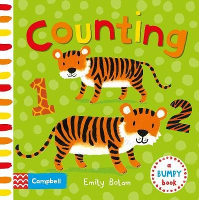 Counting (A Bumpy Book)