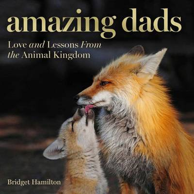 Amazing Dads : Love and Lessons from the Animal Kingdom