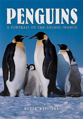 Penguins - A Portrait of the Animal World
