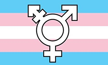 Flag – Transgender Pride Printed (with symbol) 3ft x 5ft (Polyester)