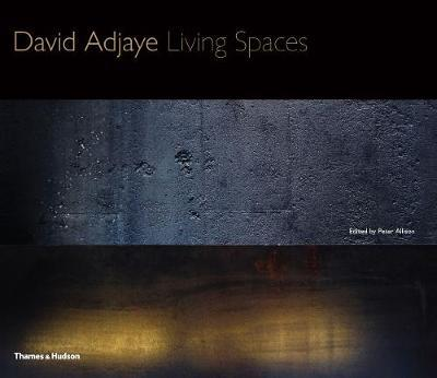 David Adjaye Living Spaces
