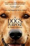 A Dog's Purpose (FTI)