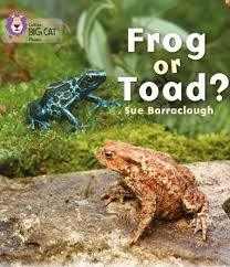 Frog or Toad?: Band 03/Yellow