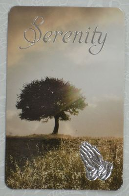 Prayer Card Laminated Serenity Tree
