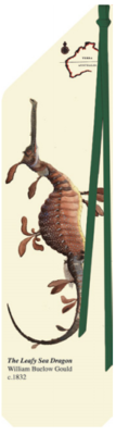 The Leafy Sea Dragon - Terra Australis Bookmark - TA008