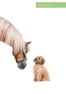 Lock Up Diary:  Dog and Horse