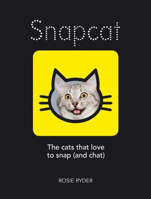 Snapcat: The cats who love to snap (and chat)
