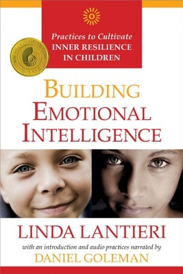 Building Emotional Intelligence : Practices to Cultivate Inner Resilience in Children