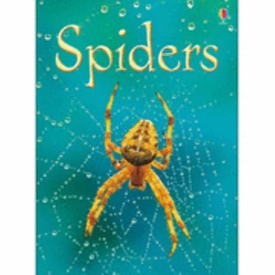 Spiders (Usborne Beginners Level 1)