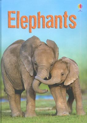 Elephants (Usborne Beginners)