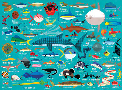 Ocean Life Family Puzzle : 1000 Piece Jigsaw Puzzle