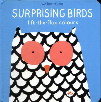 Surprising Birds: Lift-the-Flap Colours