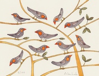 Homepage finches
