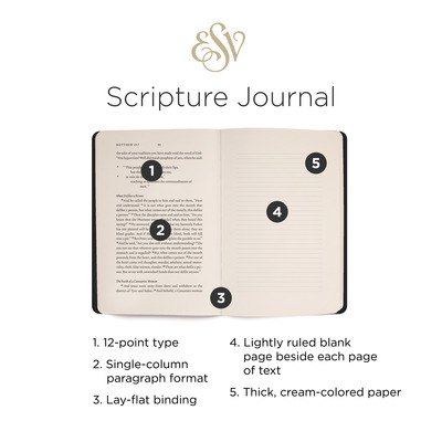 Scripture Journal New Testament Set: English Standard Version