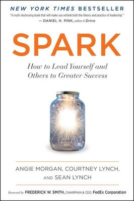 Spark : How to Lead Yourself and Others to Greater Success