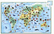 Djeco World Animals Observation Puzzle & Book 100pc