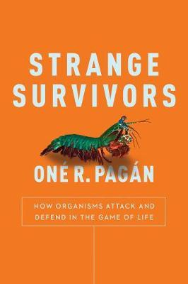 Strange Survivors - How Organisms Attack and Defend in the Game of Life