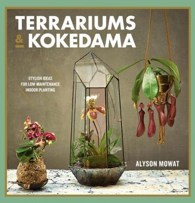 Terrariums & Kokedama: Stylish ideas for low-maintenance indoor planting