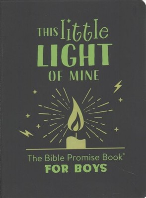 This Little Light of Mine: Bible Promise Book for Boys