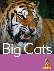Large 9781741645170 2t big cats