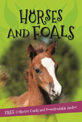 Horses and Foals (It's All About...)