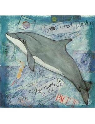 Collage Dolphin Card