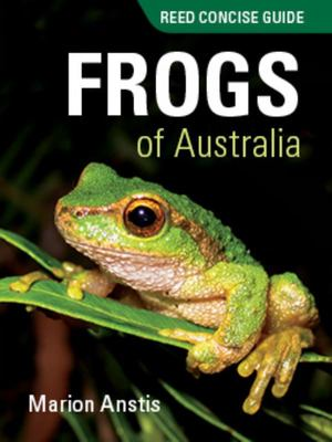Frogs of Australia (Reed Concise Guide)