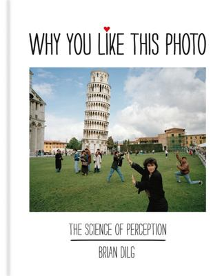 Why You Like This Photo The science of perception, and how we understand photographs