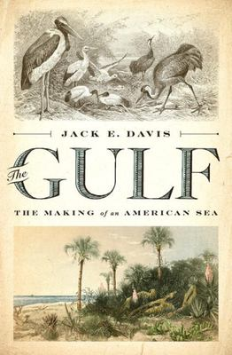 The Gulf - The Making of an American Sea