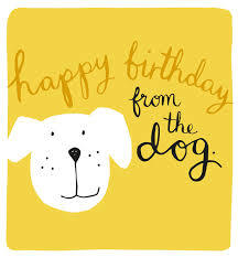 Birthday Card From the dog - MOD032 (33-14159)