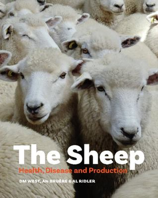 Disease and Production Sheep: Health