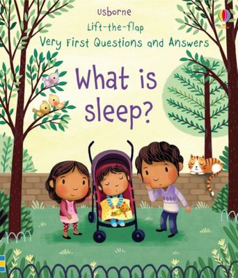 What Is Sleep? (Lift-The-Flap Very First Questions & Answers)