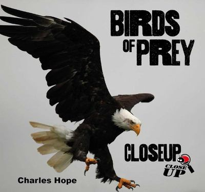 Birds of Prey: Closeup
