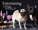 Entertaining A Dogs World