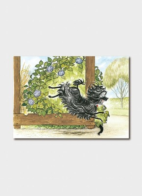 BIP 3411 Hairy Maclary Scattercat Card
