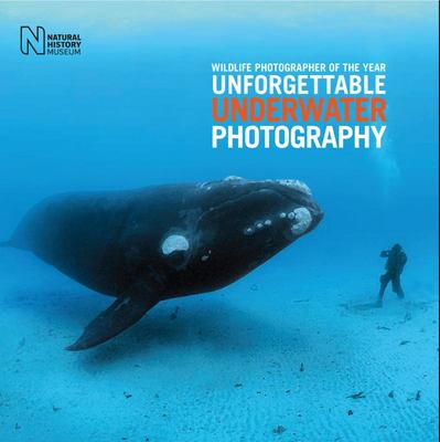 Unforgettable Underwater Photography - Wildlife Photographer of the Year
